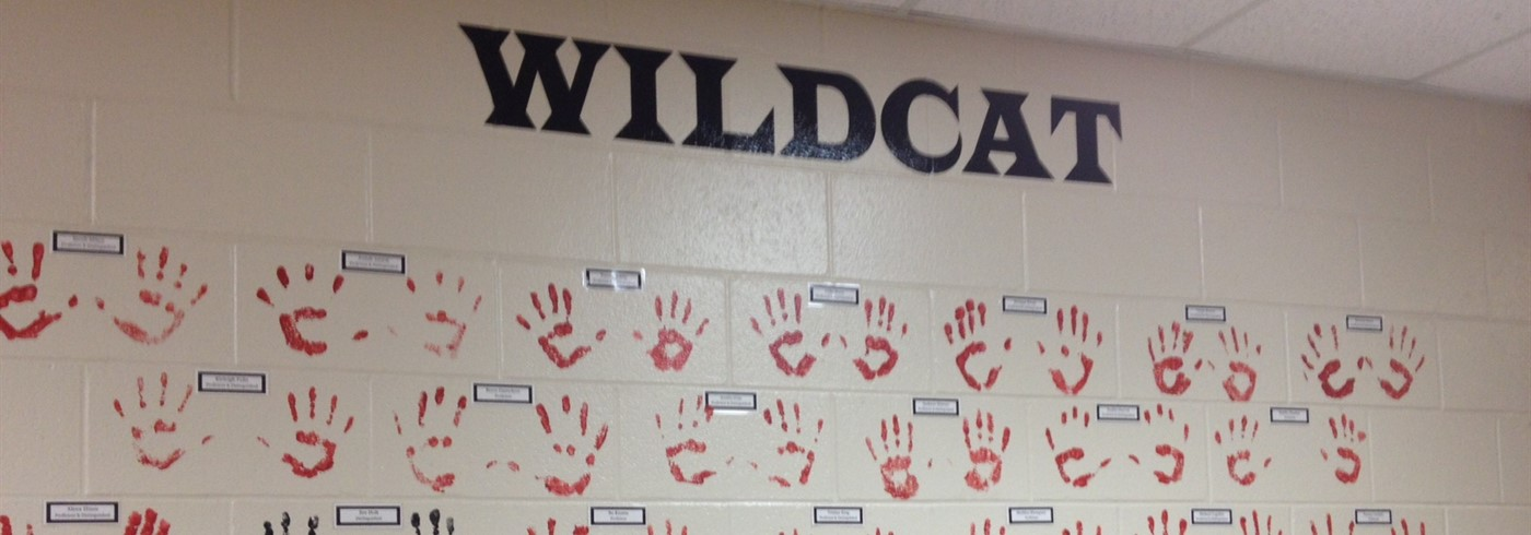Wildcat Wall